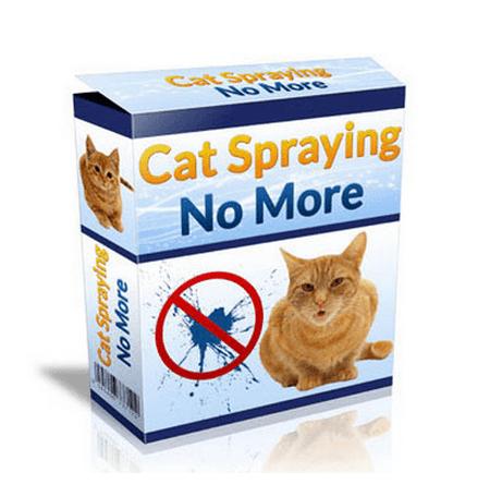 cat spraying no more1
