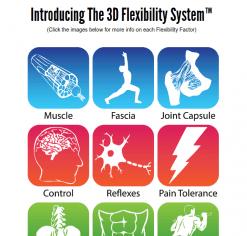 hip flexibility solution review