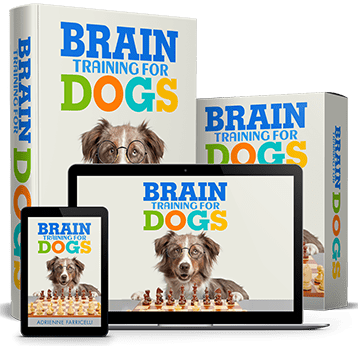 Brain Training for Dogs™ – 50% Off!